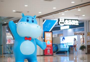 Alibaba's Supermarket Chain Freshippo and Main Challenges