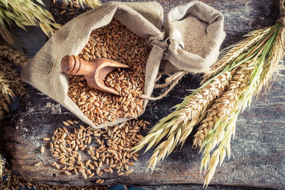 grain price